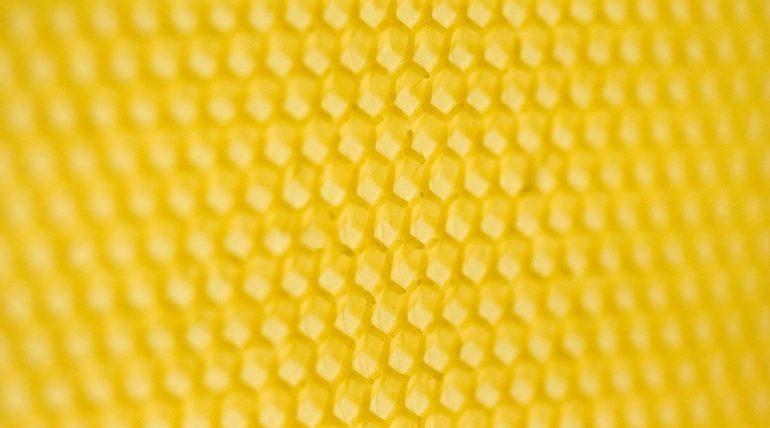 w pasiece produkowana jest węza pszczela