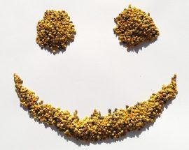 Pyłek pszczeli działa antydepresyjnie