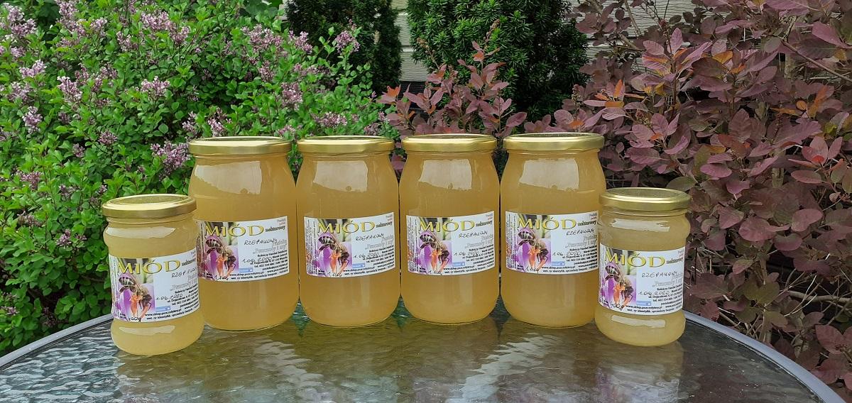 miód rzepakowy z pasieki pszczoły i my