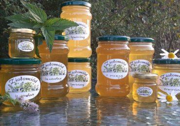 Ziołomiody z pasieki Pszczoły i My